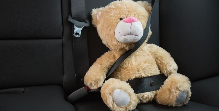 Cinturón de seguridad: ¿lo deben usar también los pasajeros?